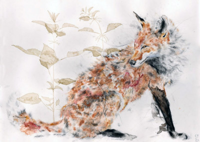 Vulpine by Andy Broderick