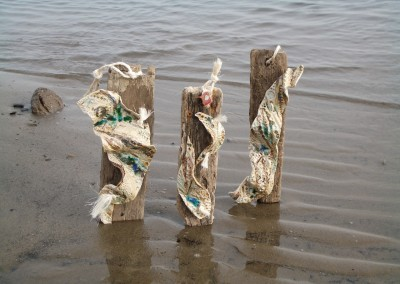 Seaweed Forms by Christine Graham