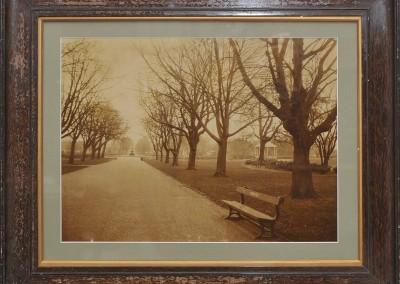 Albert Park by Charles Twist