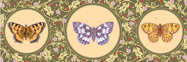 Butterfly Series No. 2